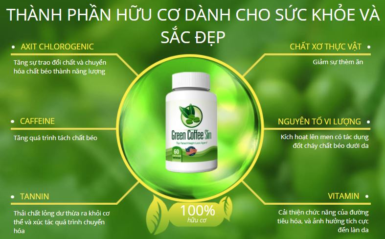 vien-uong-giam-can-chinh-hang-green-coffee-slim-2017-1